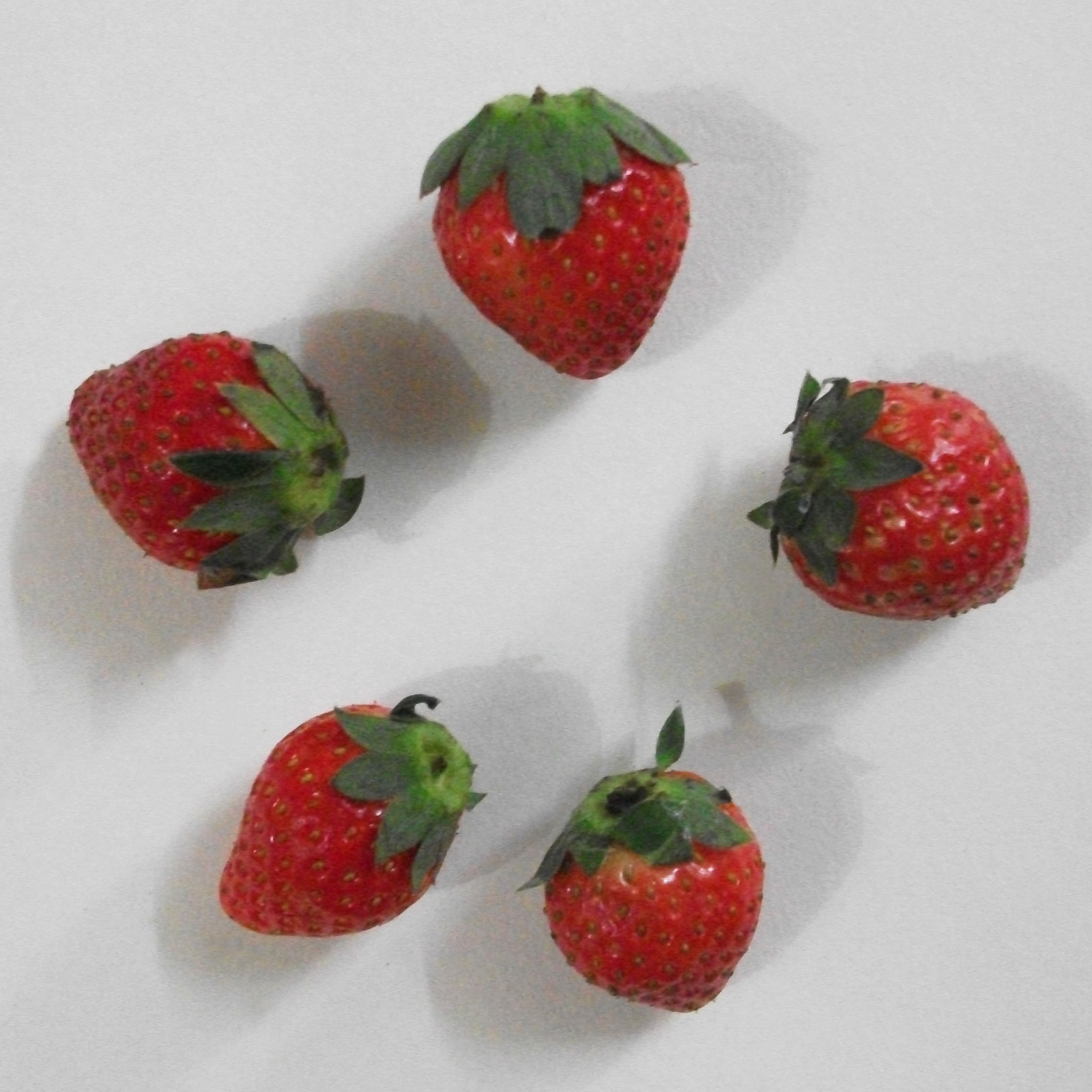 """Five Strawberries in Circle"""