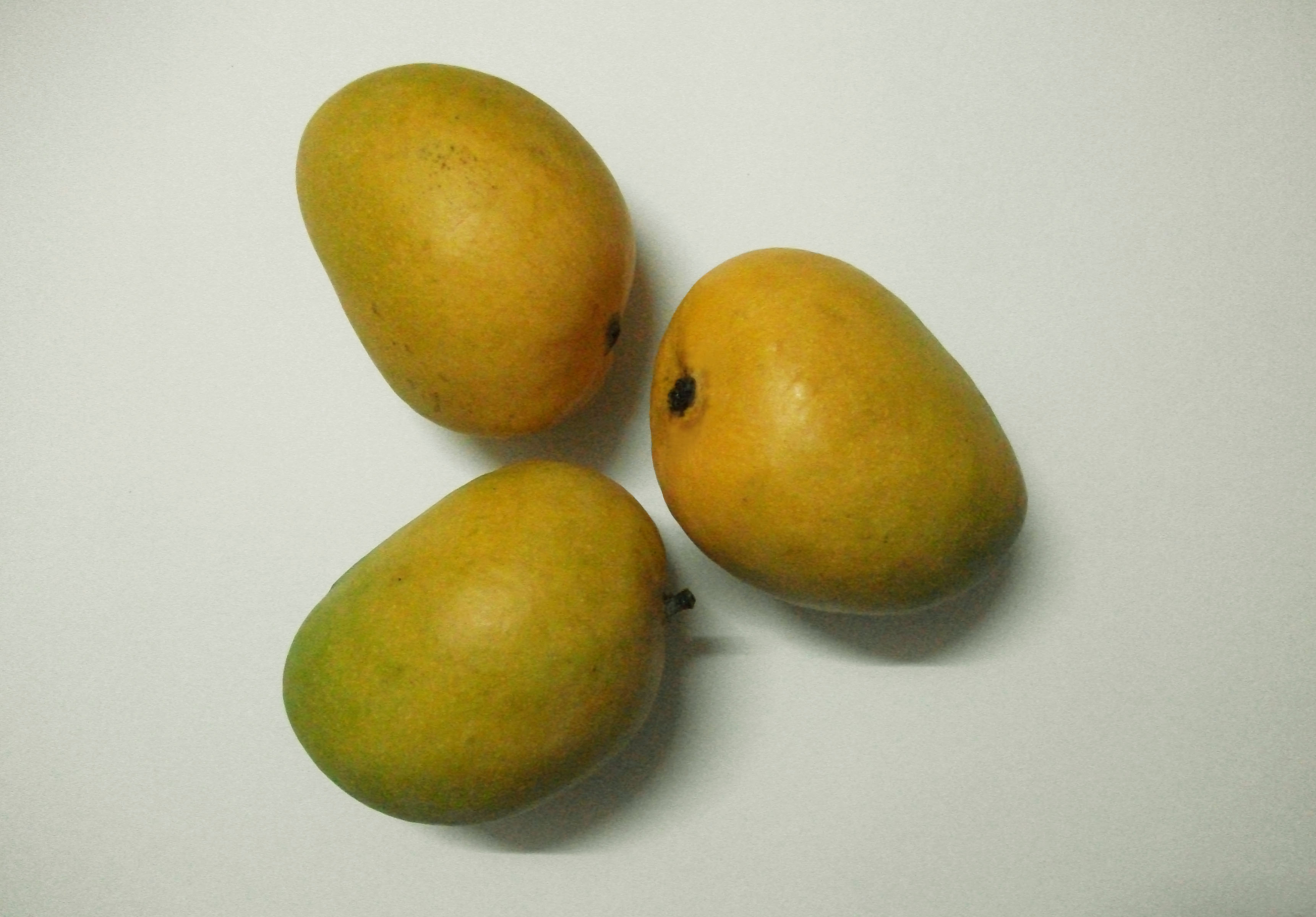 """Three Fresh Ripe Mangoes"""