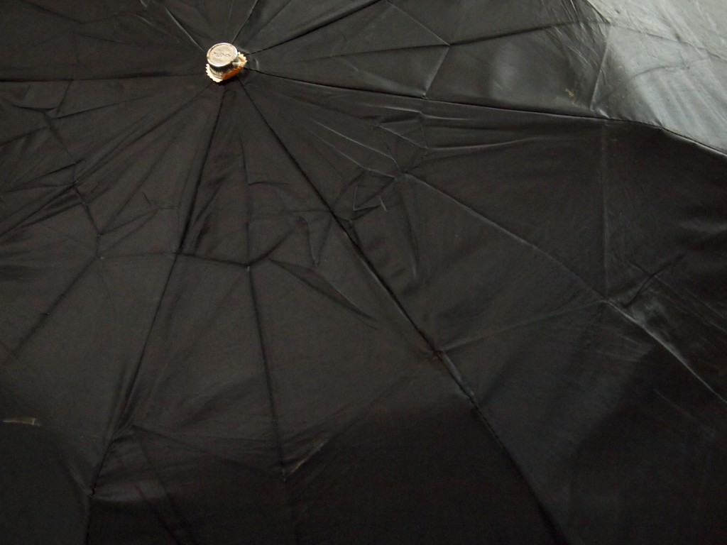 """Black Umbrella Texture 1"""