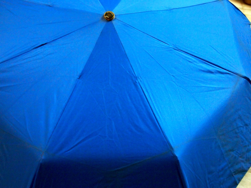 """Blue Umbrella Texture 1"""