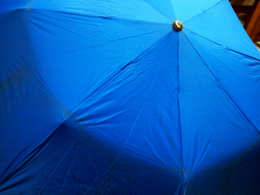 """Blue Umbrella Texture 2"""