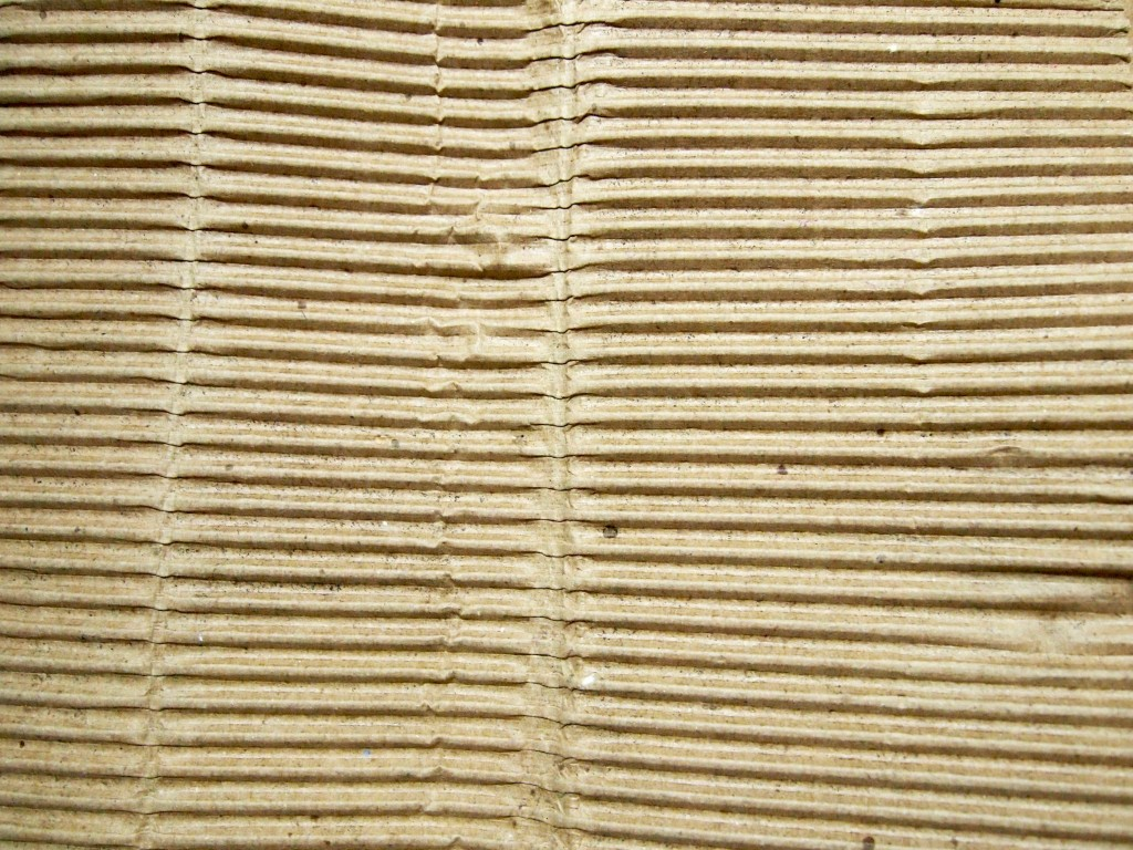 """Corrugated Cardboard Texture 10"""