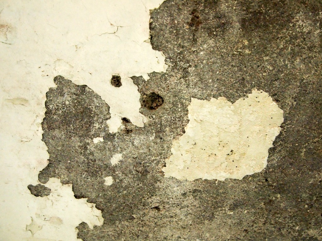 """""""Chipped Wall Paint 5"""""""