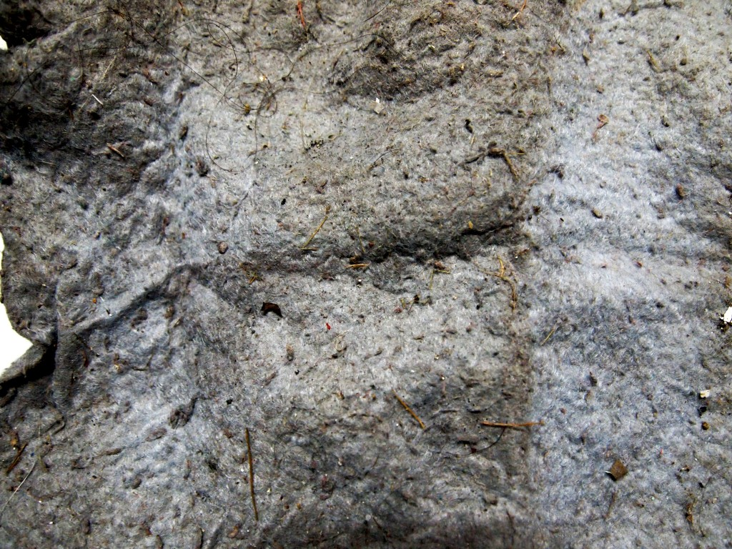 """Dirty Dusty Mop Texture 5"""