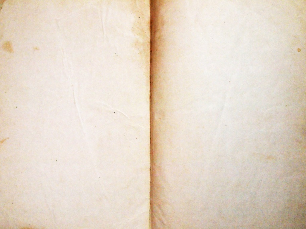 """""""Torn Tattered Paper Texture 11"""""""
