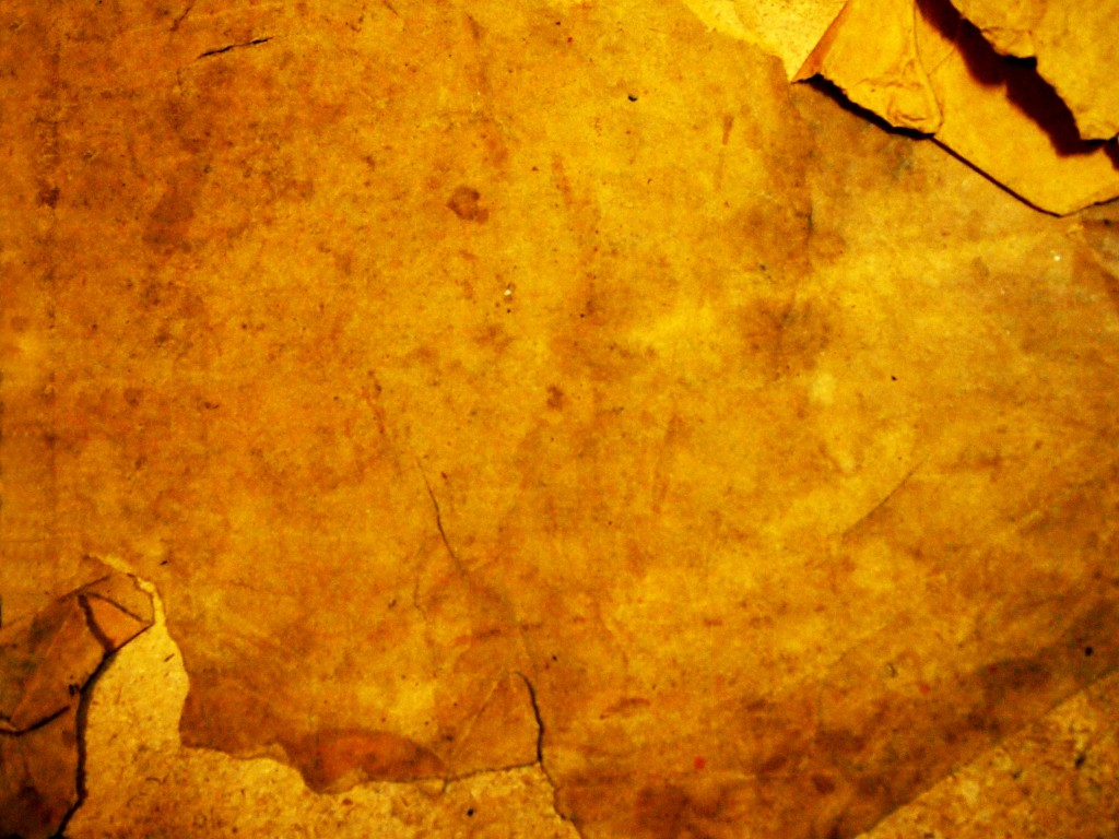 """""""Torn Tattered Paper Texture 2"""""""