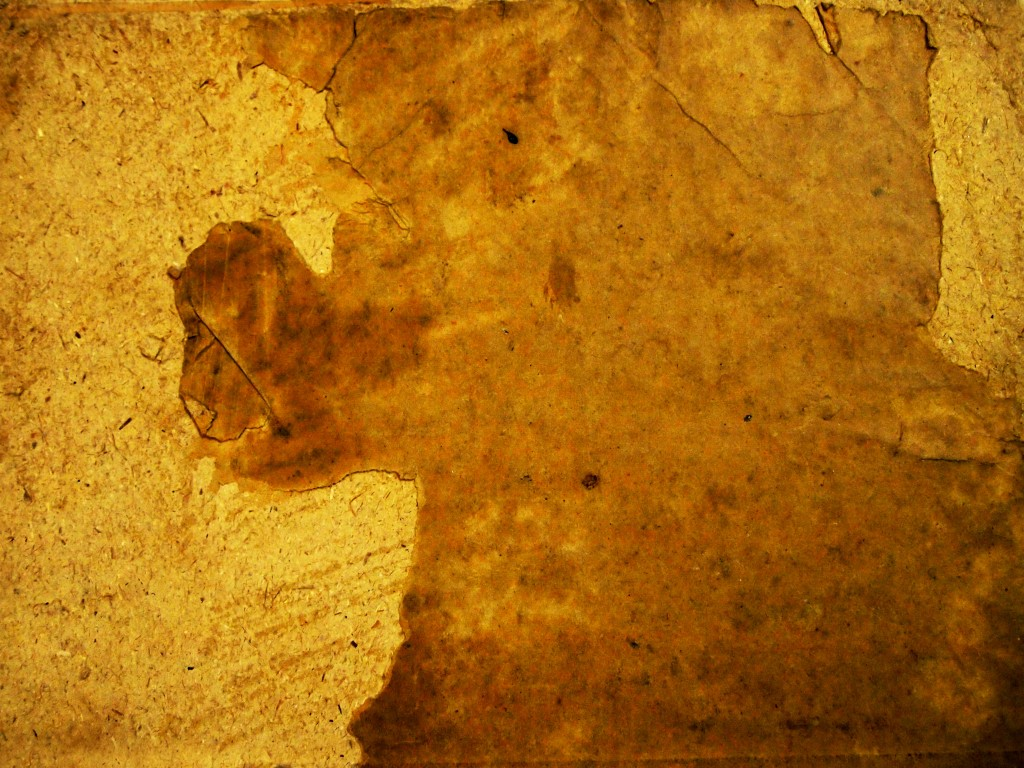 """""""Torn Tattered Paper Texture 4"""""""