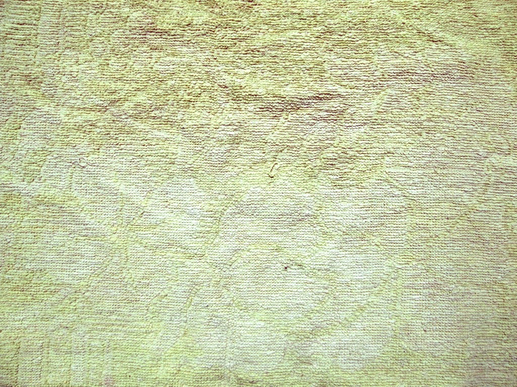 """Soft Towel Fabric Texture Greenish 1"""
